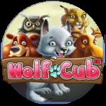 casinov Wolf Cub